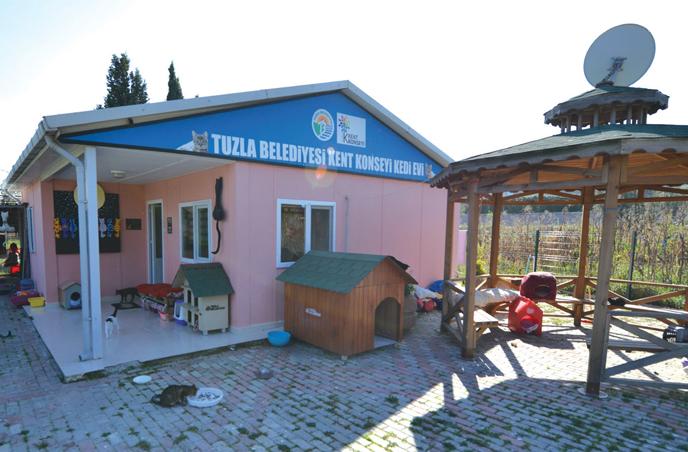Tuzla Belediyesi Kedi Evi